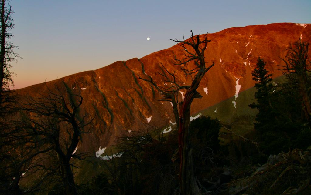 Sunrise Views on Mount Shavano Trail